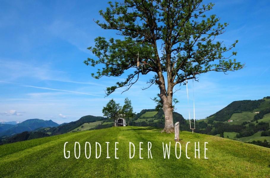 goodblog: goodie der Woche
