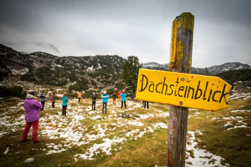 goodblog: Gjaidalm - Dachsteinblick (c) pictoresk.at