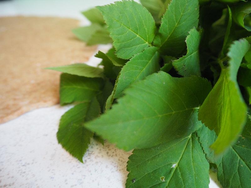 goodblog: Dreierlei vegetarische Quiche - Giersch-Quiche Zubereitung