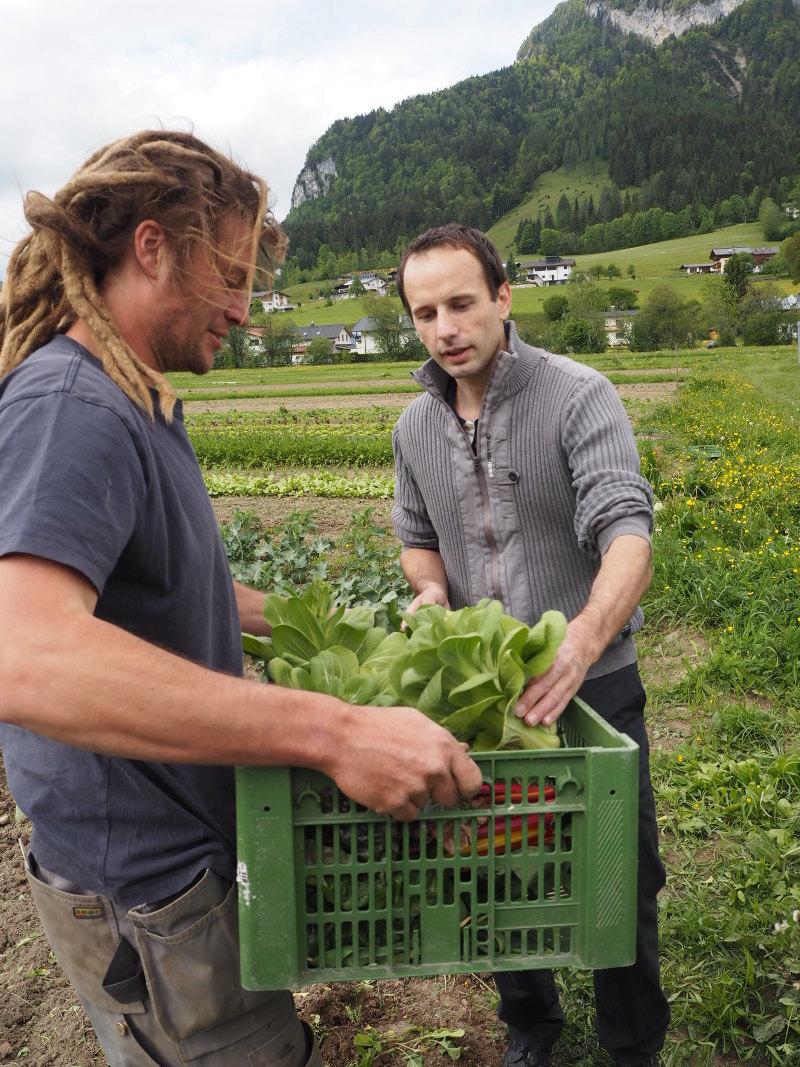 goodblog im Biomagazin - Bio statt Büro: Hüttschader Biogemüse, Toni Baldauf mit Stefan Lenz