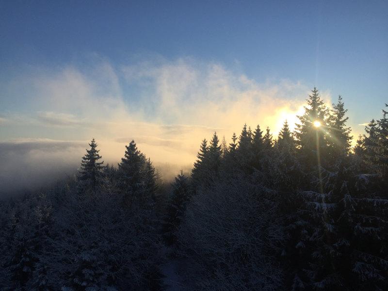 goodblog: Die schönsten Sonnenaufgänge - am Damberg über dem Nebel