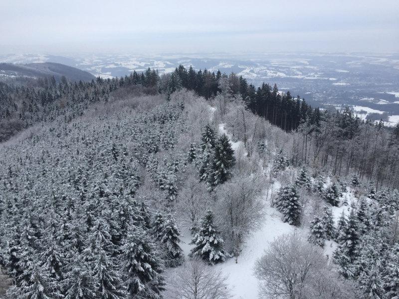 goodblog: Schluss mit Überfluss - Damberg