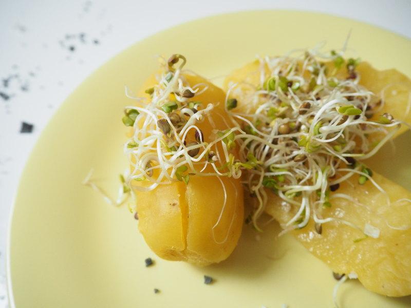 goodblog in der NEUEN Vorarlberger Tageszeitung: Frühlingsfit mit Kresse und Sprossen - Kartoffeln mit Butter und Sprossen