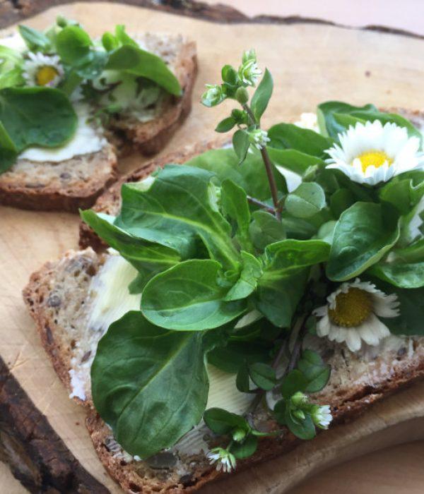 goodblog: Natürlich Entschlacken im Frühling - Kräuter aufs Brot