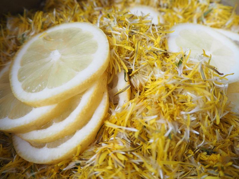 goodblog in der NEUEN Vorarlberger Tageszeitung: Löwenzahn-Marmelade - einkochen mit Zitrone