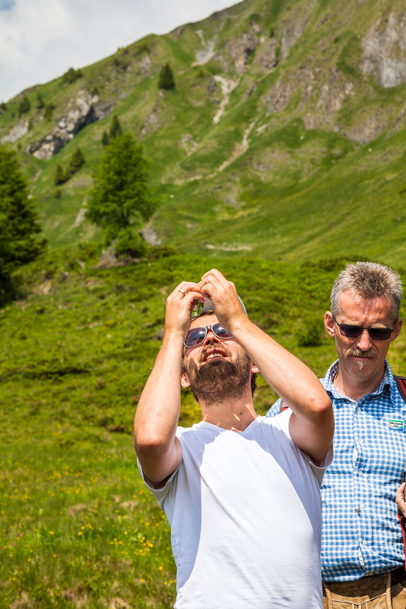 goodblog im Großarltal: Almkräuter & Kameratest - Johanniskraut