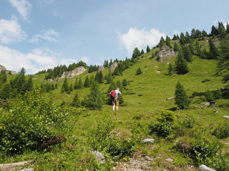 goodblog im Großarltal: Almkräuter & Kameratest - Kräuterwanderung