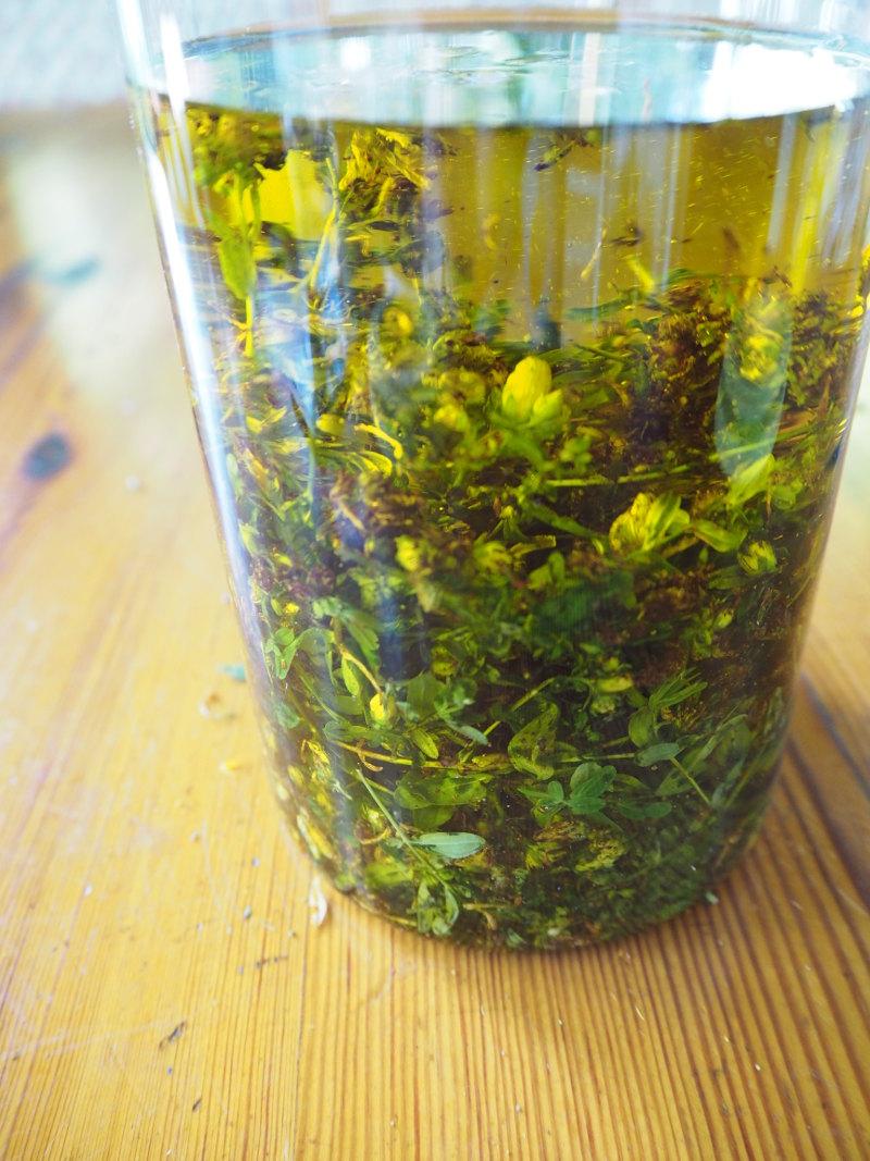 goodblog in der NEUEN Vorarlberger Tageszeitung: Rotöl ansetzen - der Kaltauszug mit Olivenöl
