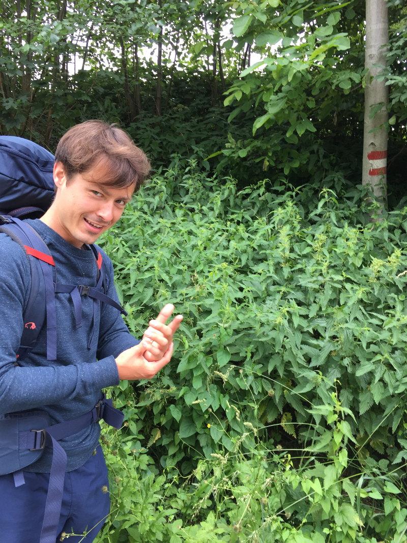 goodblog: Ernst pilgert - und bestaunt Kräuter