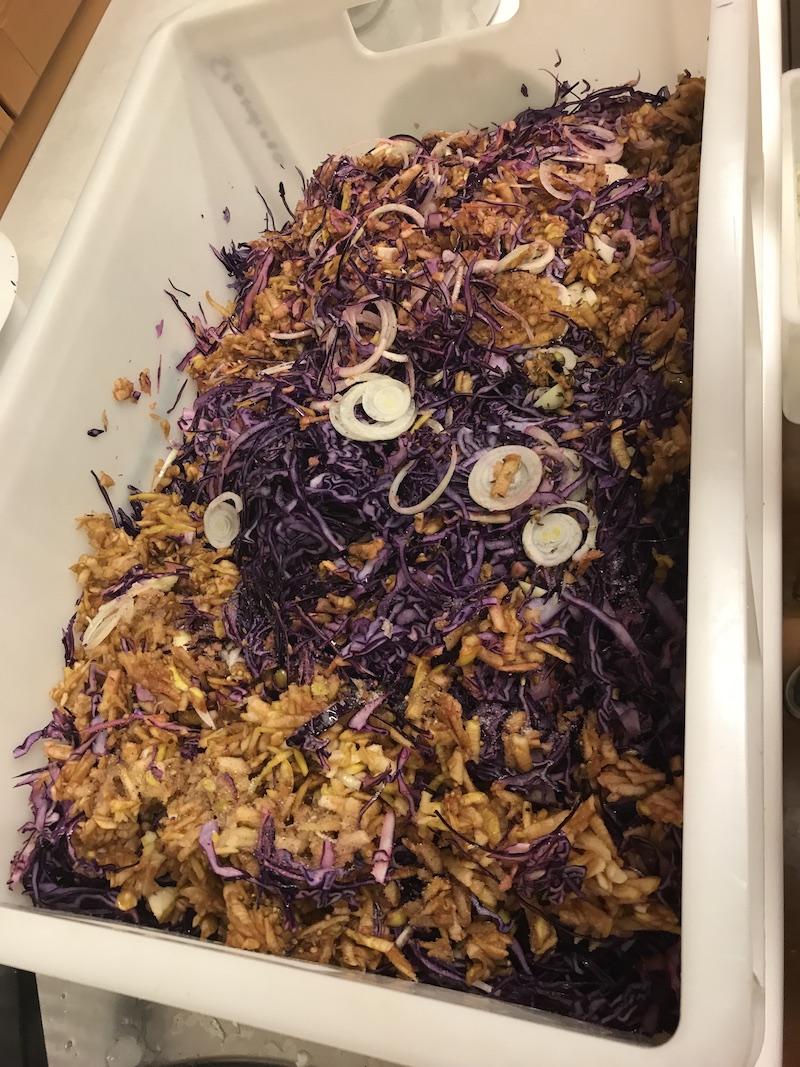goodblog in der NEUEN Vorarlberger Tageszeitung: Gemüse fermentieren - Fermentiertes Rotkraut