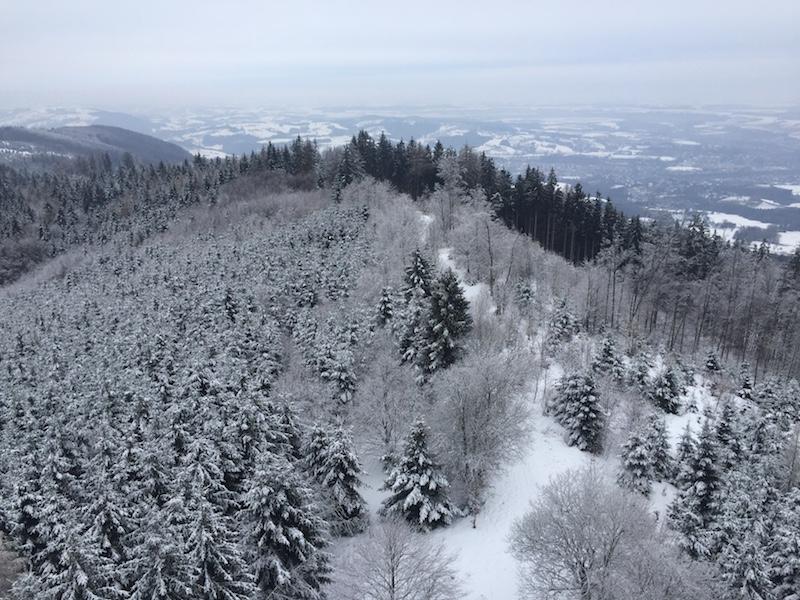 goodblog in der NEUEN Vorarlberger Tageszeitung: Raunächte