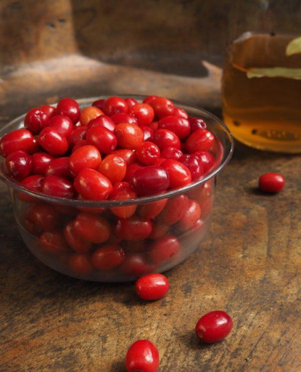 goodblog Kräuterwissen: Dirndl-Oliven
